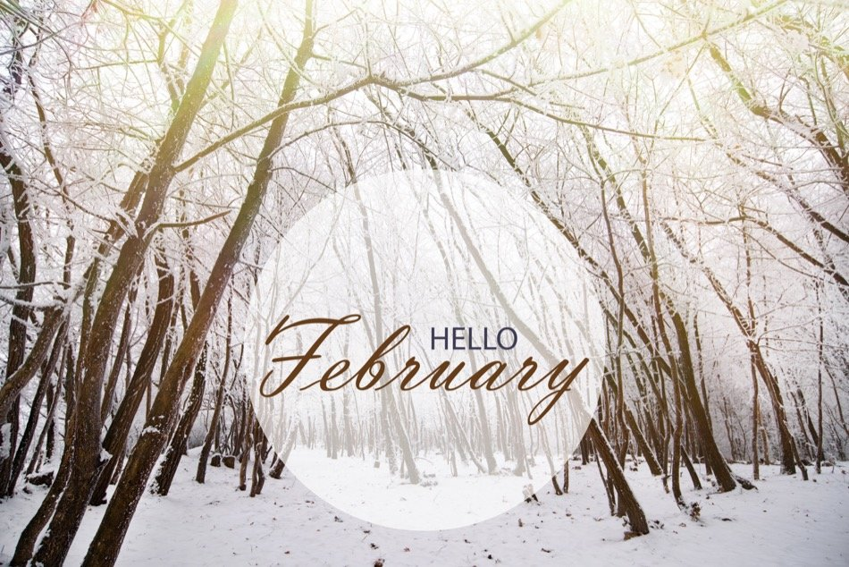 4 Must-See February Events in Kelowna, BC