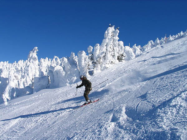 What Type Of Winter Activities Are Found In Kelowna
